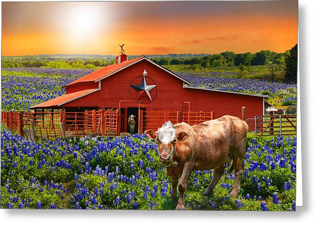 Weathervane Greeting Cards - Country Stars Greeting Card by Lynn Bauer