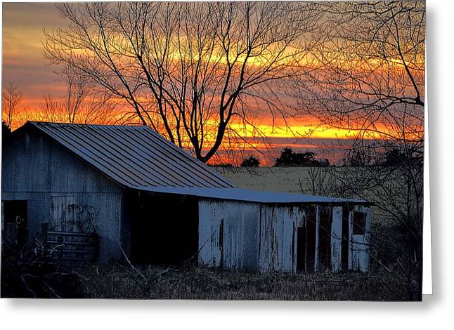 Sheds Greeting Cards - Country Sunrise Greeting Card by Deena Stoddard