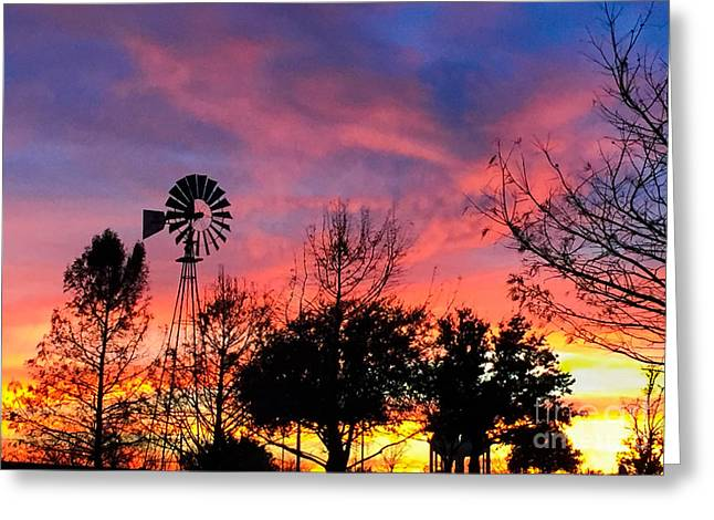 Windvane Greeting Cards - Country Sunset Greeting Card by John Roberts