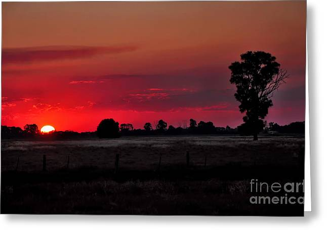 Grassy Field Greeting Cards - Country Sunset Greeting Card by Kaye Menner