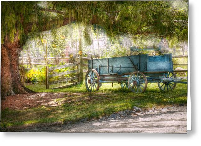 Haze Photographs Greeting Cards - Country - The old wagon out back  Greeting Card by Mike Savad