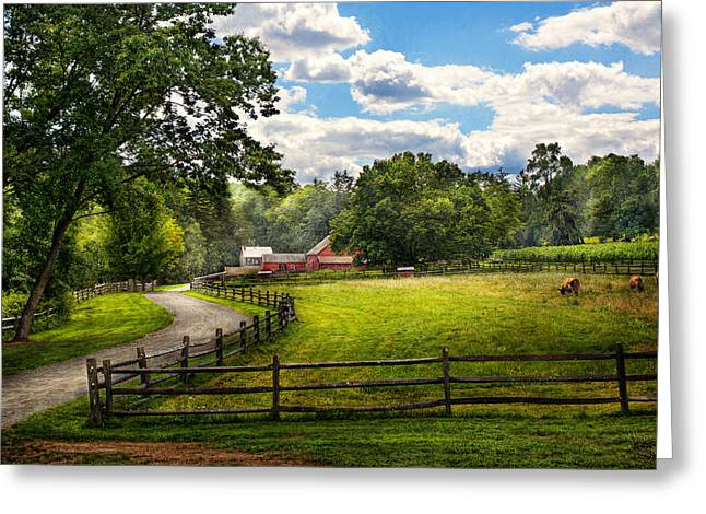 Rural Road Greeting Cards - Country - The pasture  Greeting Card by Mike Savad