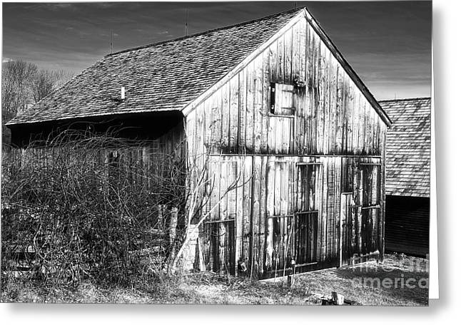 Old Barns Greeting Cards - Country Time Greeting Card by John Rizzuto