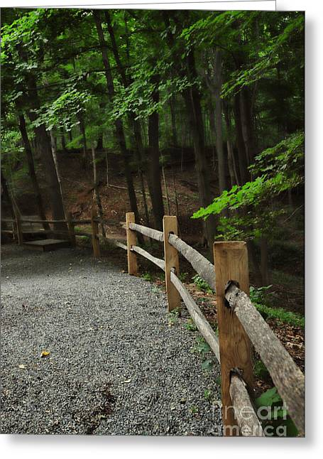 Quite Photographs Greeting Cards - Country Walk Greeting Card by Paul Ward