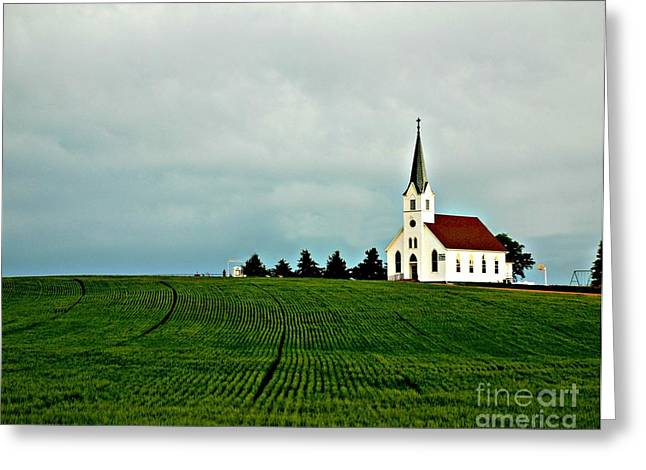 Zion Lutheran Church Greeting Cards - Country Zion Lutheran Church Across Nebraska Wheat Field Greeting Card by Erin Theisen