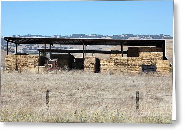 Dilapidated Houses Greeting Cards - Countryside Haystacks in Petaluma California 5D24428 Greeting Card by Wingsdomain Art and Photography