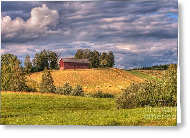 Caroline Pirskanen Greeting Cards - Countryside in Sweden Greeting Card by Caroline Pirskanen