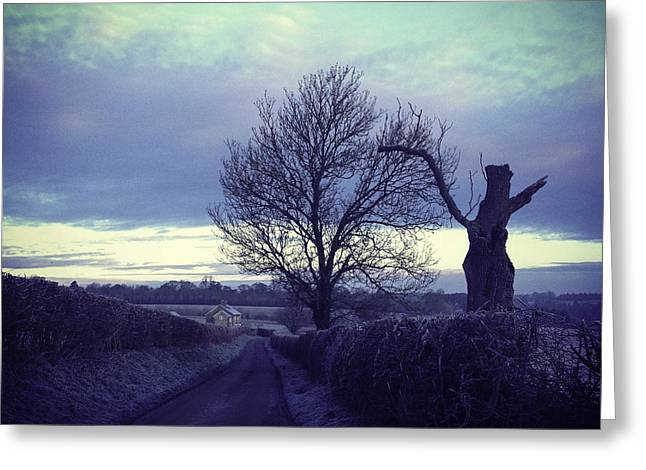 Field. Cloud Greeting Cards - Countryside road with old tree in Oxfordshire on a winter day Greeting Card by Project B