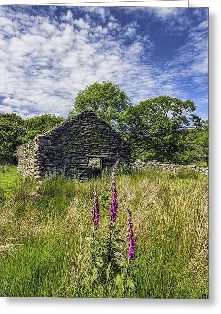 Foxglove Flowers Greeting Cards - Countryside Ruin Greeting Card by Ian Mitchell