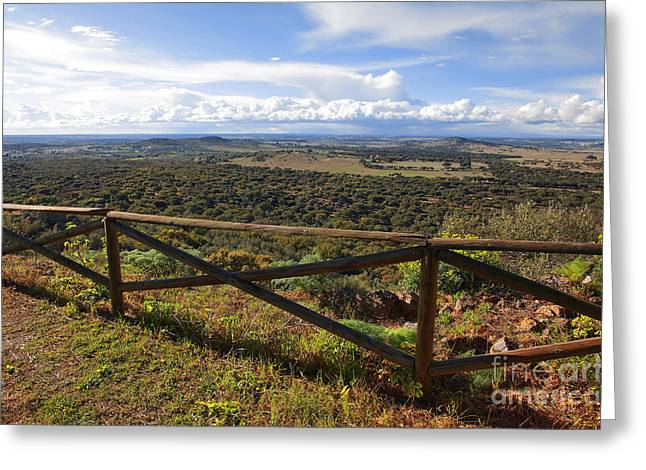 Viewpoint Greeting Cards - Countryside Viewpoint Greeting Card by Carlos Caetano