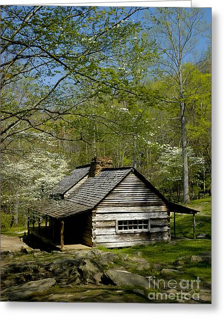 Log Cabins Greeting Cards - Counttry Cabin Greeting Card by Paul W Faust -  Impressions of Light