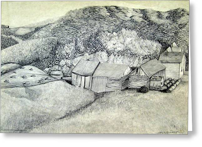 Bale Drawings Greeting Cards - County K Neville Farm Greeting Card by Kathleen Barlament