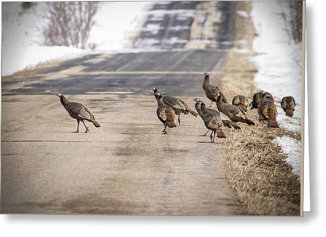 County Road Crew Greeting Card by Thomas Young