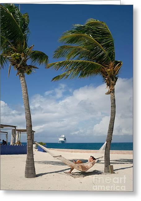 Little Stirrup Cay Greeting Cards - Couple in Hammock on Beach Greeting Card by Amy Cicconi
