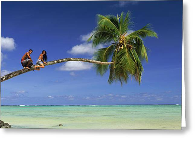 Young Adult Photographs Greeting Cards - Couple On Trunk Of A Palm Tree Greeting Card by Panoramic Images