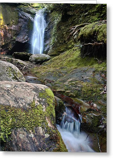 Blue Ridge Pyrography Greeting Cards - Courthouse Falls Greeting Card by Frank Burhenn