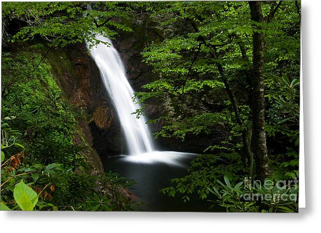 Cullowhee Greeting Cards - Courthouse Falls II 2010 Greeting Card by Matthew Turlington