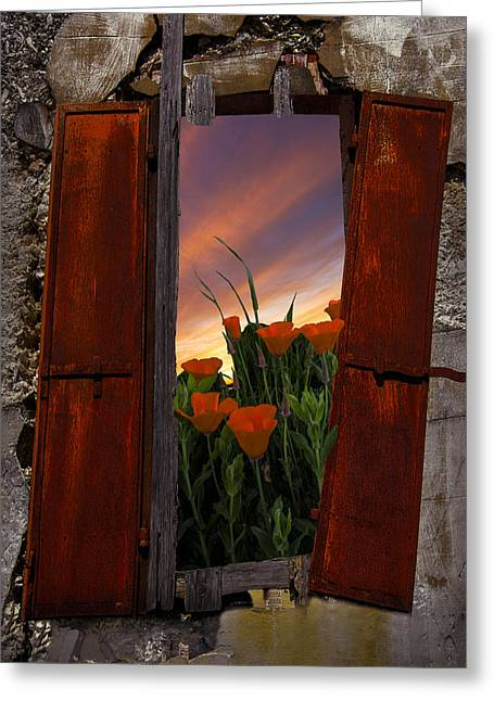 Swiss Photographs Greeting Cards - Courtyard Window Greeting Card by Debra and Dave Vanderlaan