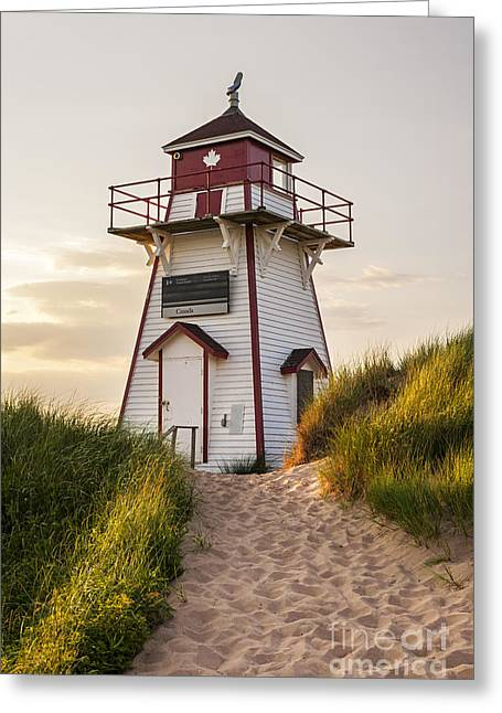 Pink Sunset Greeting Cards - Covehead Harbour Lighthouse Greeting Card by Elena Elisseeva