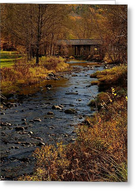 Fall Trees With Stream. Greeting Cards - Covered Bridge Greeting Card by Don Dennis