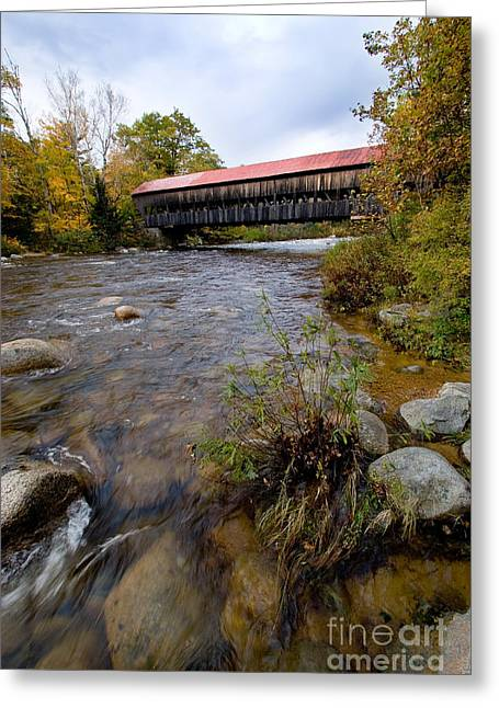 Covered Bridge Greeting Cards - Covered Bridge Greeting Card by Gregory G. Dimijian, M.D.