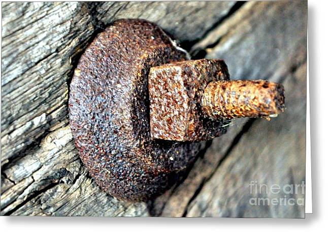 Covered Bridge Nut And Bolt Greeting Card by Mike Baltzgar