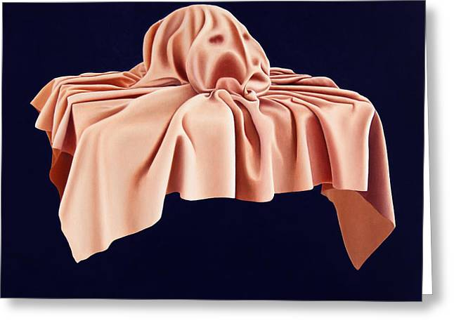 Covered Head Paintings Greeting Cards - Covered Greeting Card by Dan Breakspear