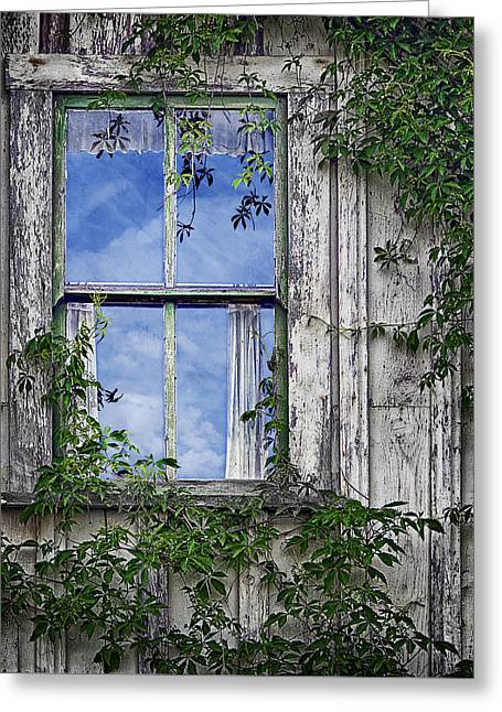 Covered In Vines - Old House Window Greeting Card by Nikolyn McDonald