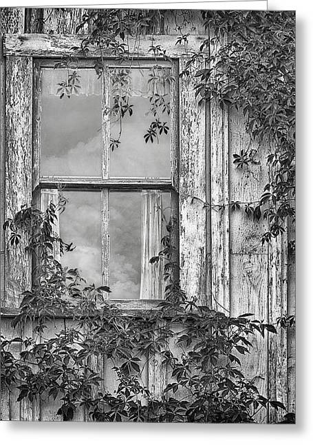 Covered In Vines - Window In Old House - Black And White Greeting Card by Nikolyn McDonald
