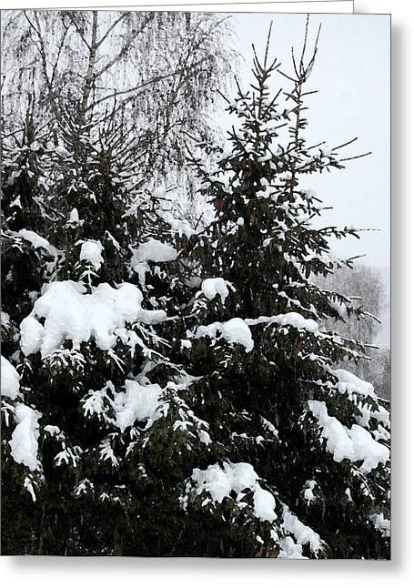 Snow-covered Landscape Greeting Cards - Covered Snow Firs Greeting Card by Gina Dsgn