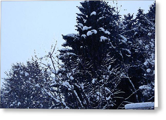 Snow-covered Landscape Greeting Cards - Covered Snow Trees Greeting Card by Gina Dsgn
