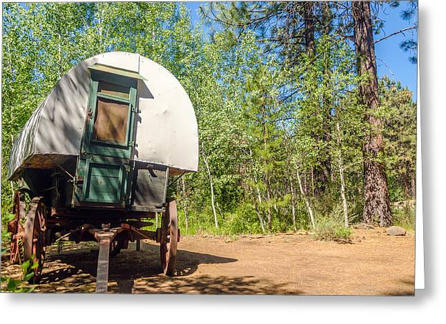 Wagon Greeting Cards - Covered Wagon in a Forest Greeting Card by Jess Kraft