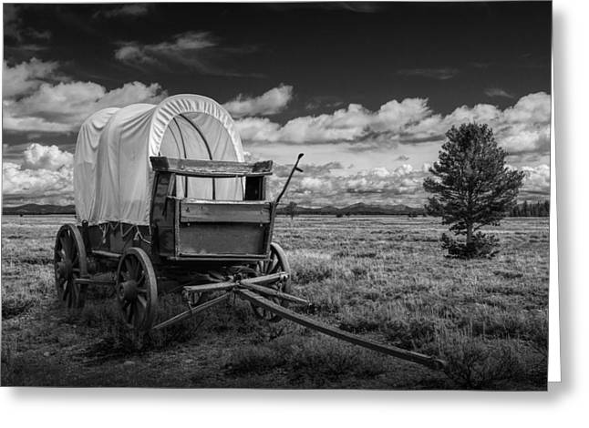 Schooner Art Greeting Cards - Covered Wagon in the Grand Tetons in Black and White Greeting Card by Randall Nyhof