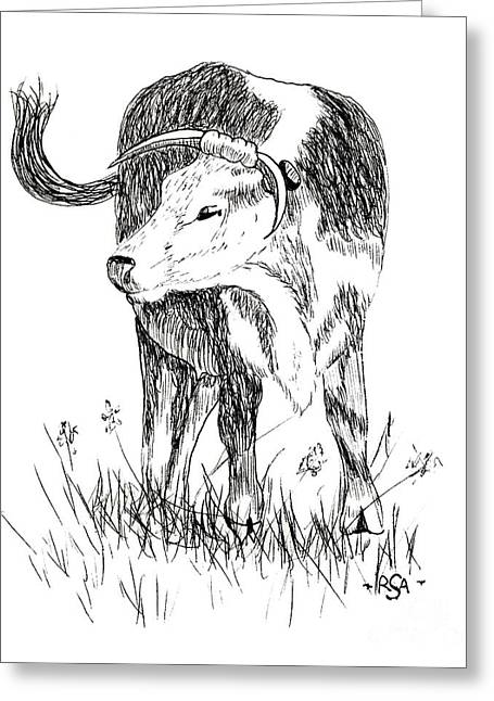 Pen And Ink Rural Drawings Greeting Cards - Cow in Pen and Ink Greeting Card by Rose Santuci-Sofranko