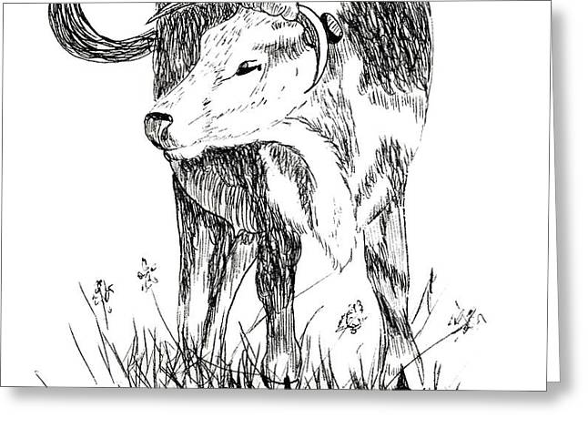 Cow in Pen and Ink Greeting Card by Rose Santuci-Sofranko