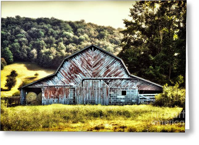 Cows Framed Prints Greeting Cards - Cow Palace I - Blue Ridge Mountains Greeting Card by Dan Carmichael