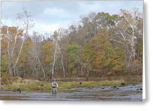Fishing Creek Greeting Cards - Cow Shoals Arkansas Greeting Card by Phil Rispin