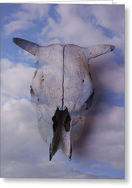 Mingle Greeting Cards - Cow Skull In Clouds Greeting Card by Garry Gay