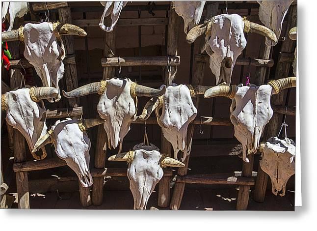 Steer Photographs Greeting Cards - Cow Skulls Greeting Card by Garry Gay