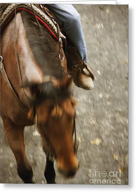 Cowboy Greeting Card by Margie Hurwich