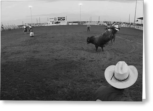 Bull Riding Greeting Cards - Cowboy Riding Bull At Rodeo Arena Greeting Card by Panoramic Images
