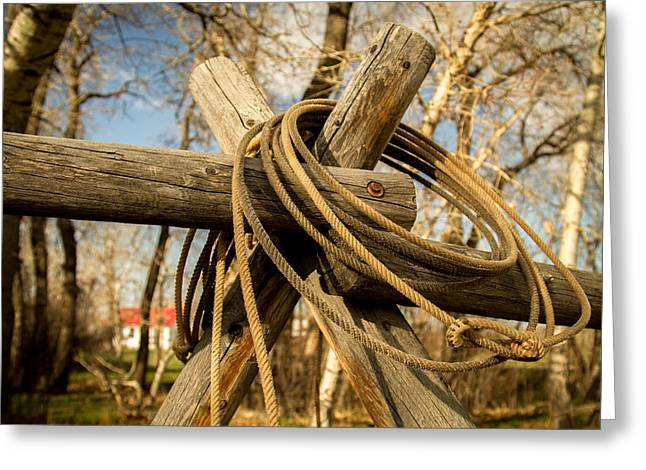 Old Western Photos Greeting Cards - Cowboy Rope Greeting Card by Richard Cheski