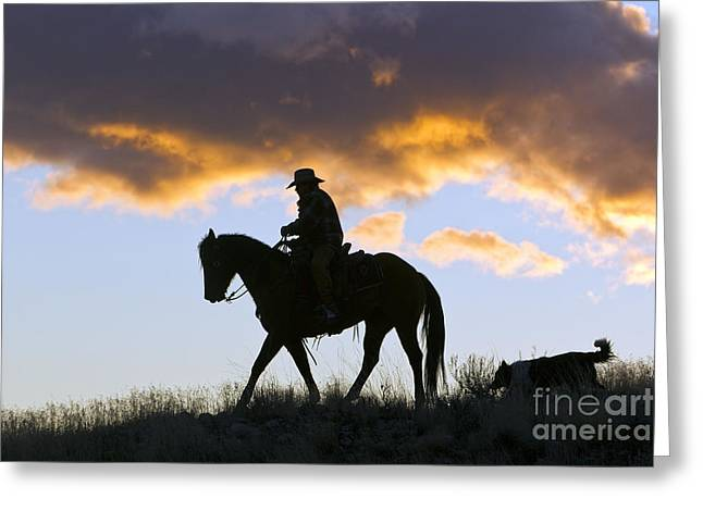 Quarter Horse Greeting Cards - Cowboy Silhouette Greeting Card by M. Watson