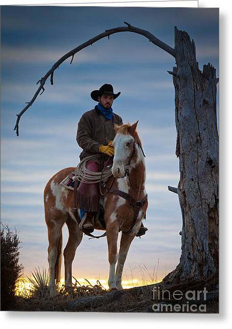 Folks Humans Greeting Cards - Cowboy Under Tree Greeting Card by Inge Johnsson