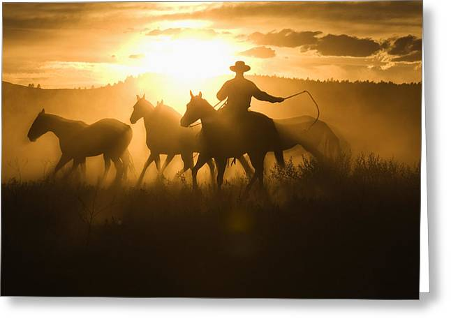 Silhouettes Of Horses Greeting Cards - Cowboy With Lasso Herding Horses Oregon Greeting Card by Konrad Wothe