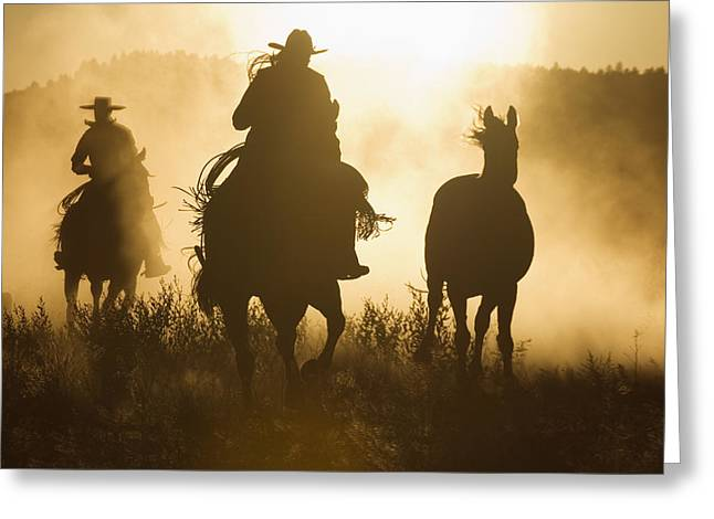 Silhouettes Of Horses Greeting Cards - Cowboys Herding Horses At Dusk Oregon Greeting Card by Konrad Wothe