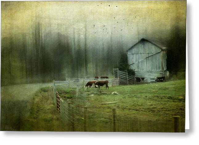 Barn Yard Photographs Greeting Cards - Cows By The Road Greeting Card by Kathy Jennings