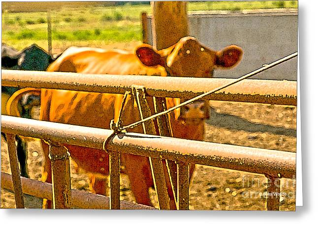 Cows Coming Home Greeting Card by Artist and Photographer Laura Wrede