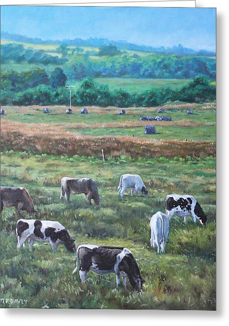 M P Davey Greeting Cards - Cows in a field in the Devon countryside Greeting Card by Martin Davey
