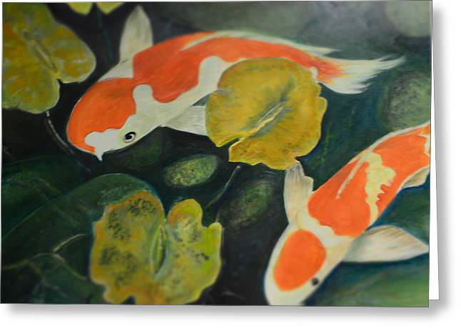 Searching For Something Greeting Cards - Coy Fish Greeting Card by Karen Norberg